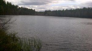 Lake on large acreage
